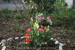 Garten April bis Juni 2018 Bild 004