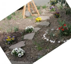 Garten April bis Juni 2018 Bild 010