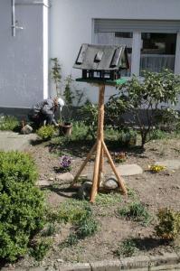 Garten April bis Juni 2018 Bild 024
