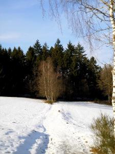 Gernsdorf - Februar 2018 Bild 10
