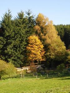 Gernsdorf - Oktober 2017 Bild 05