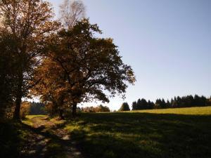 Gernsdorf - Oktober 2017 Bild 06