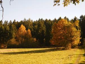 Gernsdorf - Oktober 2017 Bild 14