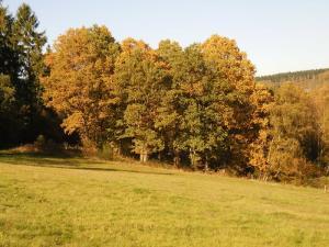 Gernsdorf - Oktober 2017 Bild 24